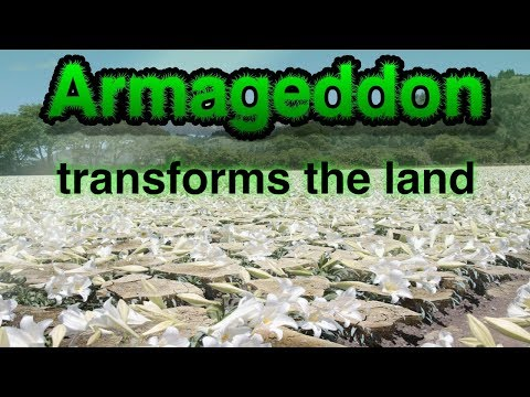 Cameos of the Kingdom Pt 1 -  Armageddon transforms the Land