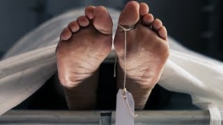 7 Unique Things To Do With Your Body When You Die