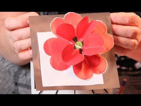 видео: Красивые открытки-поздравления с цветами с днем рождения - красный мак