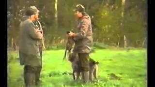Обучение на ловното куче част 2 - Hunting dog training part. 2