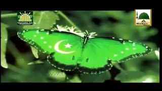 Mere Data Ka Pakistan