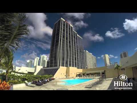 Day At The Pool- Hilton Miami Downtown