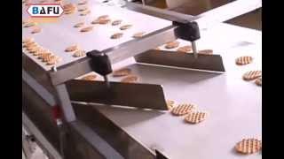 Biscuits Packaging Line, Cookies Packaging Line, Cracker Packaging Line, Muffin Packaging Line