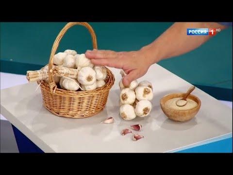 Польза чеснока / Доктор Мясников
