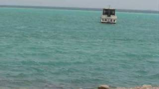 عروس البحر .wmv
