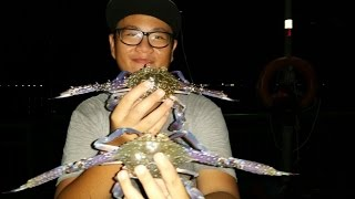 NUMEROUS FLOWER CRABS CAUGHT AT SEMBAWANG PARK !