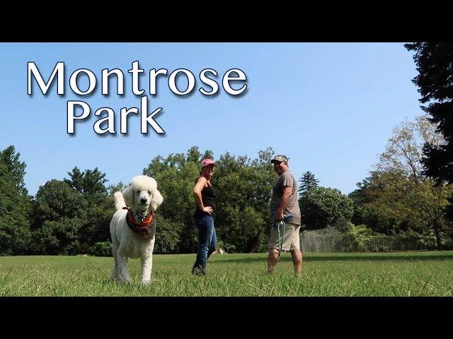 Montrose Park in Washington, DC