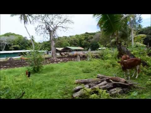 Bike Ride Around Denis Island, Seychelles