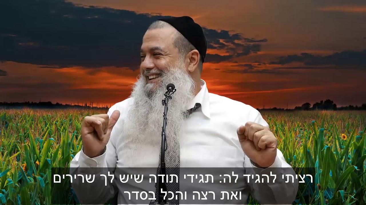 הרב יגאל כהן - דילול עוברים HD {כתוביות} - קצרים