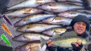 Рыбалка от Михалыча! Ищем хищника на большой воде! Трудовая ловля судака зимой на спиннинг