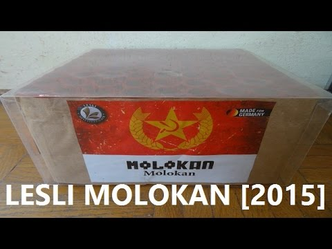 Lesli Molokan - 81 Heuler fast auf Schlag [2015]