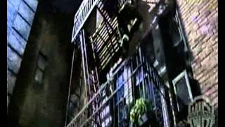 Фильм Женщина кошка (лучший трейлер 2004).wmv