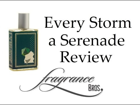 Every Storm A Serenade by Imaginary Authors MEGA REVIEW!