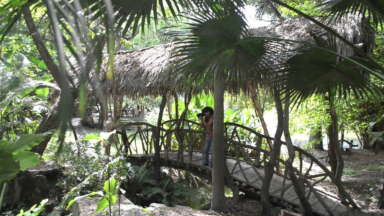 Jardin botanico de la ciudad portoviejo video de muestra for Jardin botanico u de talca