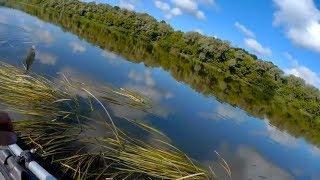 Рыбалка на Оке. Удочка,отводной,джиг,воблерки и м. джиг24.06. 2017г