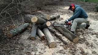 Sharp Chainsaw Cutting Firewood   Stihl 036