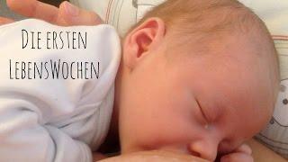 Die ersten Lebenswochen von Kai #HappyBirthdayKai I Neugeborenes I Baby I MamaBirdie