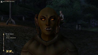 Let's Play The Elder Scrolls IV Oblivion Khajiit Boxer 2 Part 29 Me Troll, Me Drunk, Me Dead