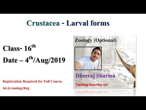 Class 16th | Crustacea - Larval Forms