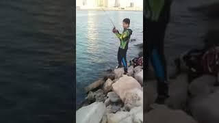 Abu Dhabi Shore Casting 7