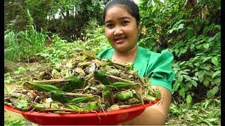 Yummy Cooking grasshopper recipe & My Cooking skill