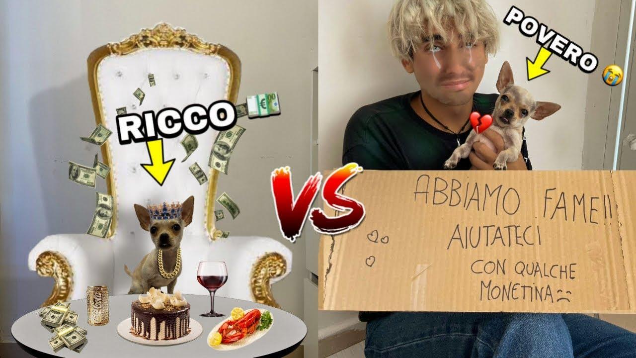 CAGNOLINO RICCO VS CAGNOLINO POVERO!! *triste*