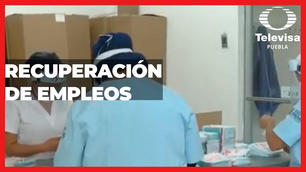 Recuperación de empleos | Las Noticias Puebla