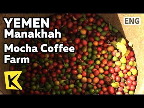 【K】Yemen Travel-Manakhah[예멘 여행-마나하]모카커피 생산 커피농장/Mocha Coffee Farm/Cliff/High Land/Bean/Mountain