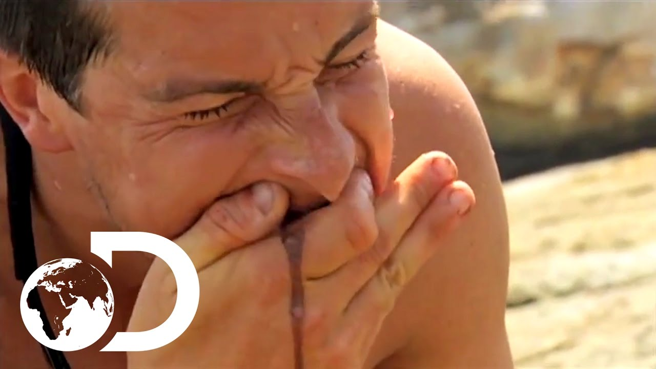 Bear Grylls' Top 3 Most Disgusting Moments | NOT FOR THE SQUEAMISH
