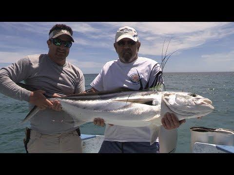 Baja Wahoo, Tuna, Amberjack & Roosterfish Fishing