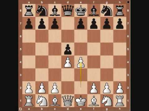 Chess Basics: Pawn Overview