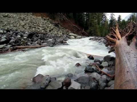 Carbon River, Mount Rainier, Washington