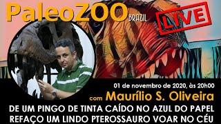 PALEOZOOBR LIVE: DE UM PINGO DE TINTA CAÍDO NO AZUL DO PAPEL REFAÇO UM LINDO PTEROSSAURO VOAR NO CÉU