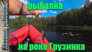 Река Грузинка Рыбалка во Всеволожском районе