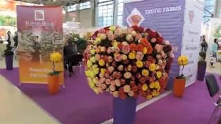 Москва Международная цветочная выставка на ВДНХ - 28 августа 2014