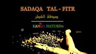 SADAQA TUL FITR - A COMPLETE GUIDE | RANGA NATURE