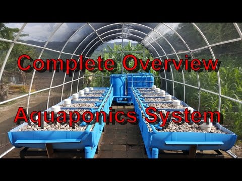 COMPLETE OVERVIEW - Aquaponics System and Greenhouse Build