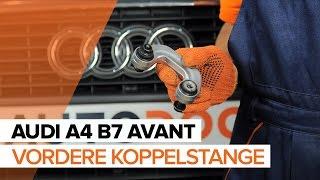 Montage AUDI A4 Avant (8ED, B7) Zündkerzensatz: kostenloses Video