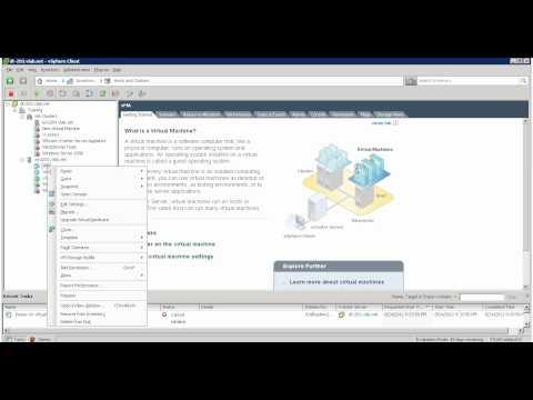 vMA5 and IP Allocation Policy