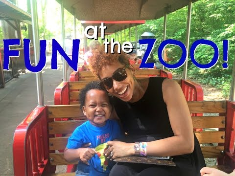 FUN at the ZOO! April 2017 - abeeutifullife vlog