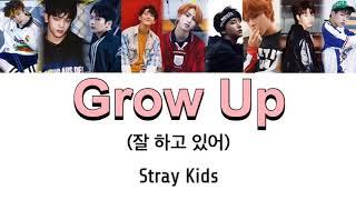 Stray Kids Grow Up(잘 하고 있어) の歌詞 和訳 カナルビです。 MV → ht...