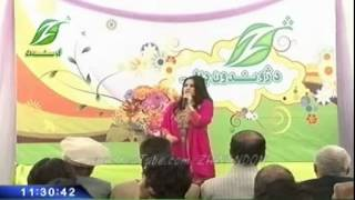 pashto new song () Shama Ashna Zan Me Sha Che Zan De ...