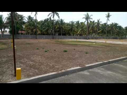 DTCP plots in Saravanampatti, Coimbatore
