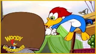 Woody Woodpecker   Carney Con   Woody Woodpecker Full Episode   Kids Cartoon   Videos for Kids