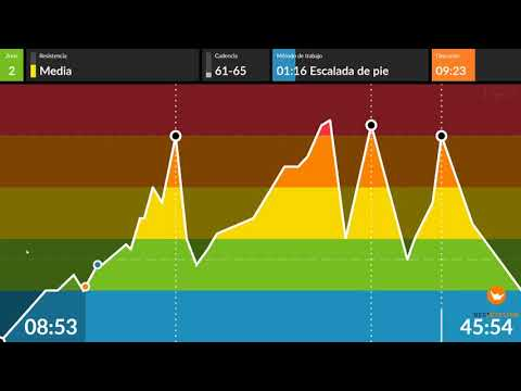 BPXport Elgoibar 2020 03 18 Ciclo 2