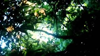 Bali's Nature With Balinese Culture | Wonderful Indonesia