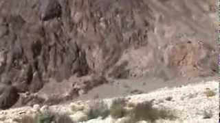 LEH LADAKH, INDIA, SINDHU RIVER FROM MAHE CHECK POST TO UPASHI, VIDEO BY PRASHANT OAK, NAGPUR