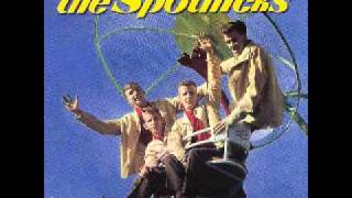 The Spotnicks - The Silky Way (1982)