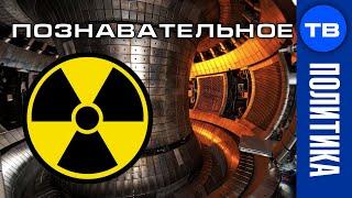 Война за атомный реактор. Почему Чехия поссорилась с Россией?