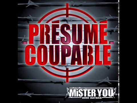 Youtube: mister you feat nessbeal presumé coupable